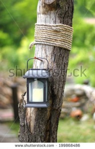 stock-photo-garden-decoraion-idea-solar-lantern-on-a-driftwood-with-rope-1998684861[1]